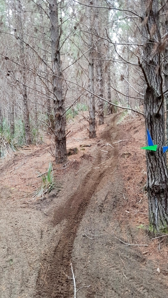 Single track at The Sandpit