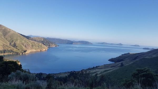 Titirangi Bay