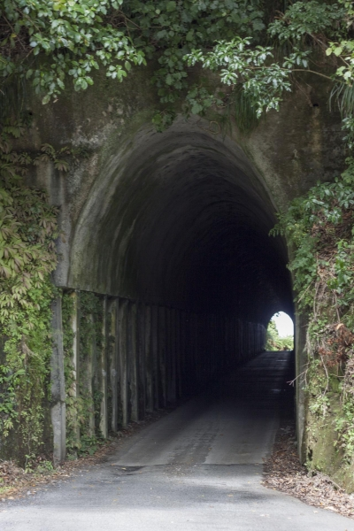 A tunnel on Upper Mangaehu Road