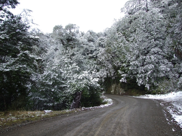 Snow on the summit of SH38 by Lake Waikaremoana