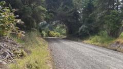 Waiotemarama Gorge Road