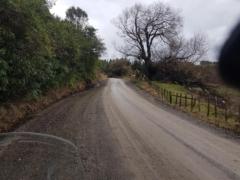 Waipunga Road near Eskdale