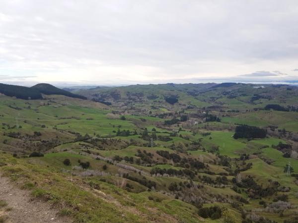 Views from Waipunga Road near Eskdale