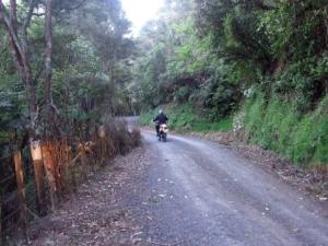 Waiti Road
