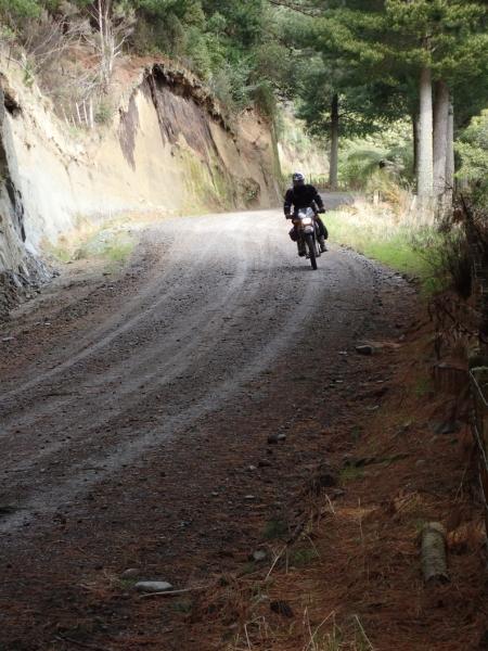 Riding Watershed and Tiriraukawa Roads