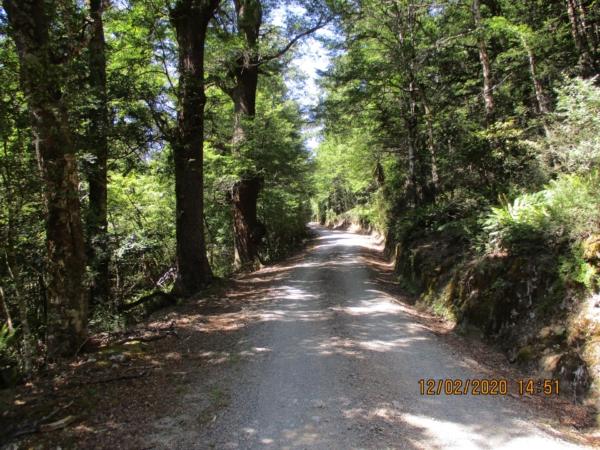 Kaweka Road