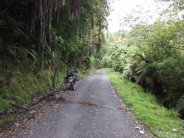 Opotiki Road